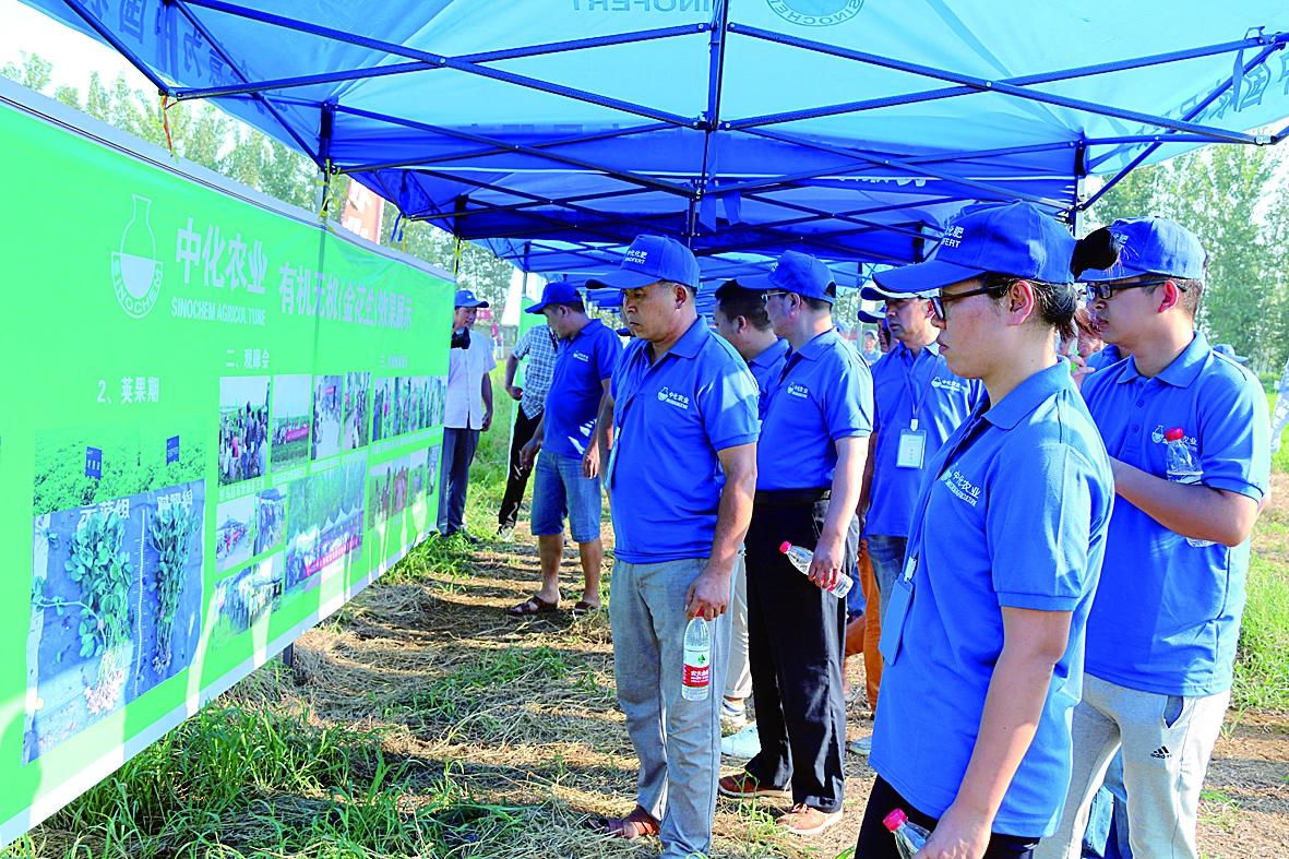 经销商参加肥料企业组织的示范田观摩会。(本报记者熊鹤雯摄)
