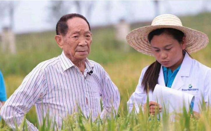 华为宣布:投资农业,主攻盐碱地!
